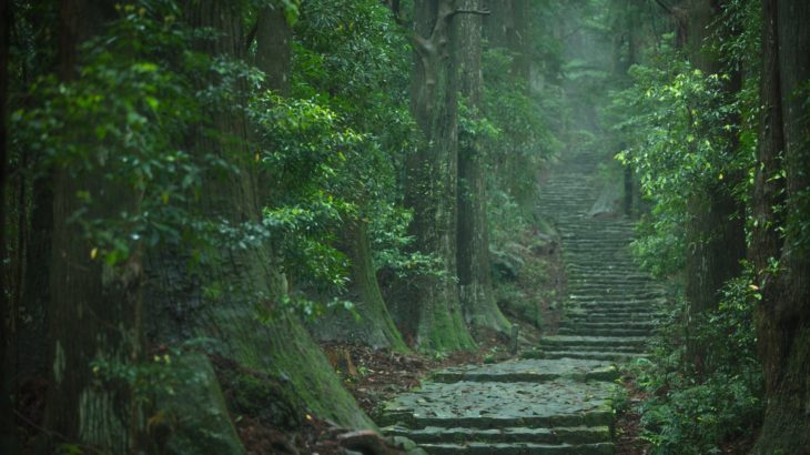 よみがえりの聖地「熊野」~なぜ歴代上皇は100回も熊野を訪れたのか~